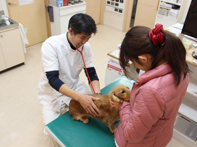 2_身体検査